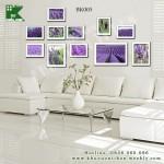 BK0005-resize-438-Lavender